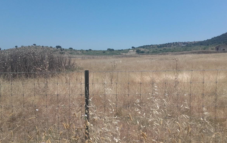 1060 OPP Fincas Rústicas SurOEste 4 1170x738 - Finca de 5.2 hectáreas con instalaciones para granja de cochinos, a 10 minutos de Mérida