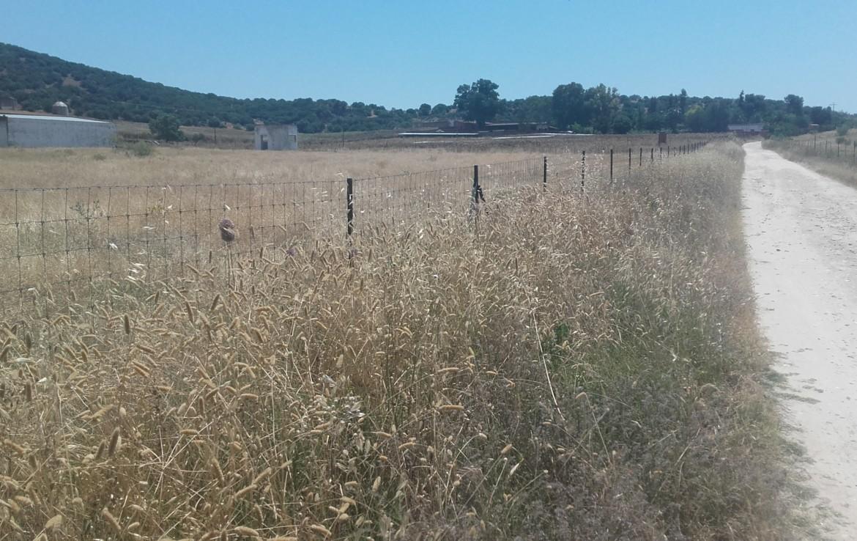 1060 OPP Fincas Rústicas SurOEste 5 1170x738 - Finca de 5.2 hectáreas con instalaciones para granja de cochinos, a 10 minutos de Mérida