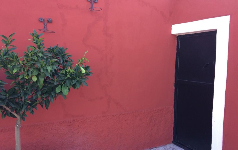 158 OPP Fincas Rústicas SurOeste 3 1170x738 - Parcela de 4.5 hectáreas a diez minutos de Mérida. Vega de rio, casa 100m2, ideal caballos, o cultivo en secano o regadío