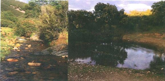 2 - Finca de caza de 600 hectáreas entre Navalmoral y Guadalupe, mucha caza, cortijo.
