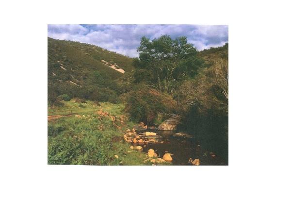 4 - Finca de caza de 600 hectáreas entre Navalmoral y Guadalupe, mucha caza, cortijo.