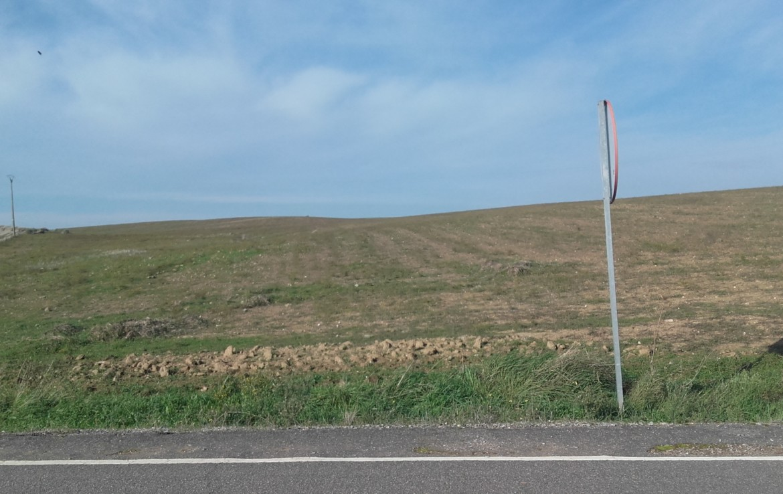 1063 OPP Fincas Rústicas SurOEste 1 1170x738 - Finca de 25 hectáreas de labor en Usagre (Badajoz)