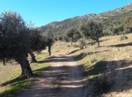 1071 OPG Fincas Rústicas SurOEste 7 150x110 - Venta de finca de 500 hectáreas de caza y recreo en Sierra de Hornachos, con olivar, encinas y cortijo